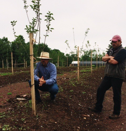 Jason (left) and Chris (right), our orchard manager